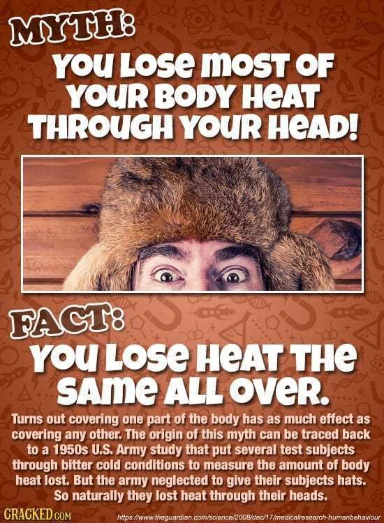 You Lose Most Of Your Body Heat Through Your Head: 34 Things (Almost) Everyone Is Wrong About
