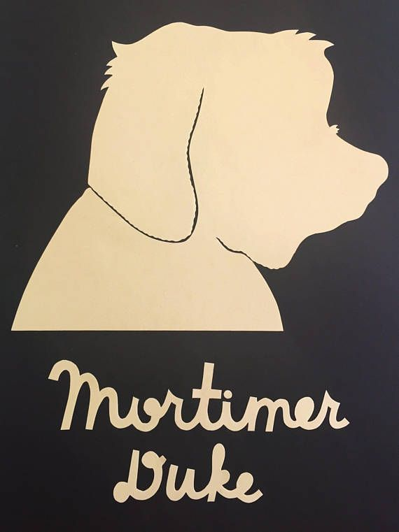 colorful custom pet silhouettes (with hand-cut lettering) by ADELAIDE MILLS.