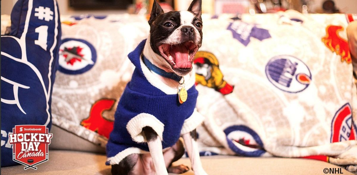 #HockeyPets can join too.  #HockeyDay