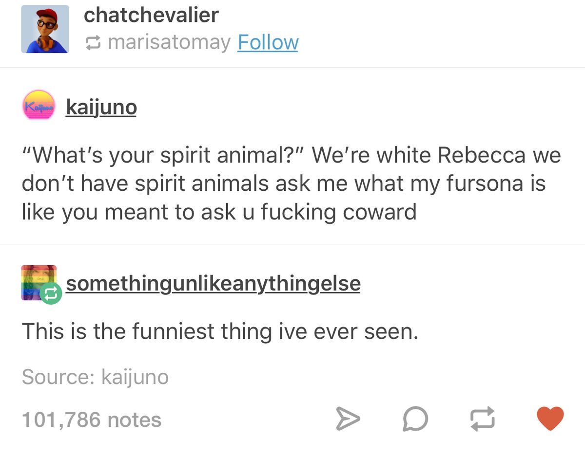 What's your spirit animal | funny tumblr post