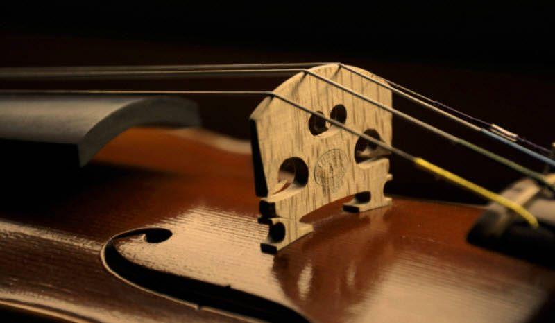 22 Ideas De Violin Música Y Laudería Revista Musical Peliculas Sobre Musica Revista Musical Violines