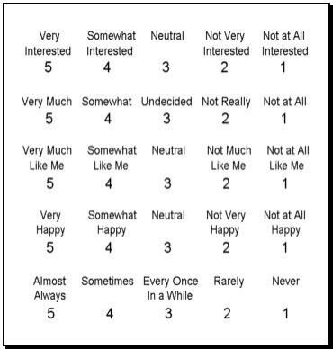 Likert Scale Example Likert Scale Templates 3 Free Sample Example - data analysis template
