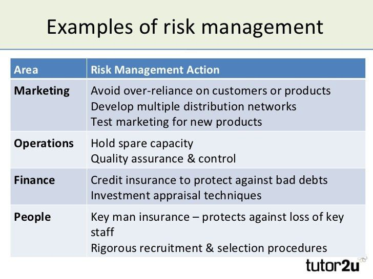 Risk Management Plan Example For Business Sample Risk Management - risk management plan template