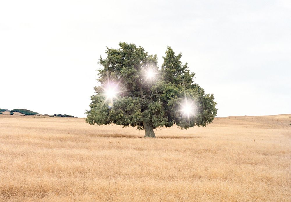 Andrea Galvani © 2005, Death of an image #4 C-print on aluminum dibond, wood white frame, 128 x 173 cm // 50.4 x 68 inches