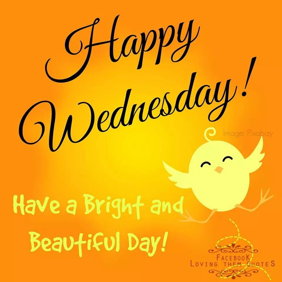 Quotes Morning: Happy Tuesday, Have A Great Day And Quotes Quotes On Pinterest