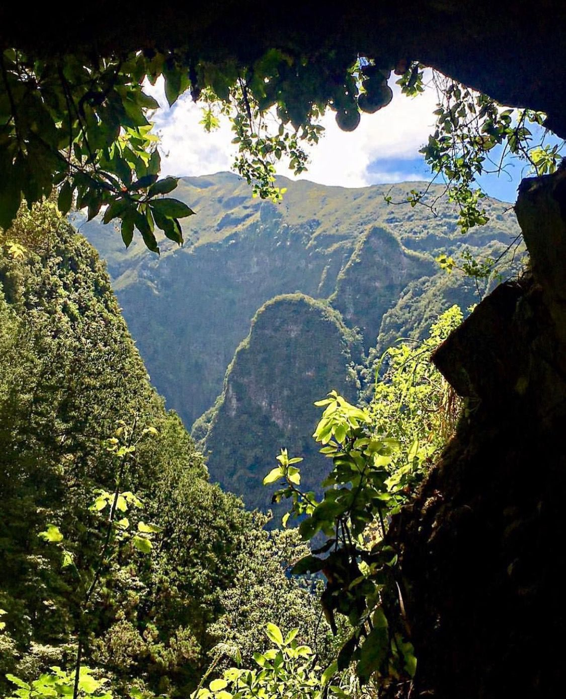 8 Things to Know About Madeira Island in Portugal | Slaylebrity