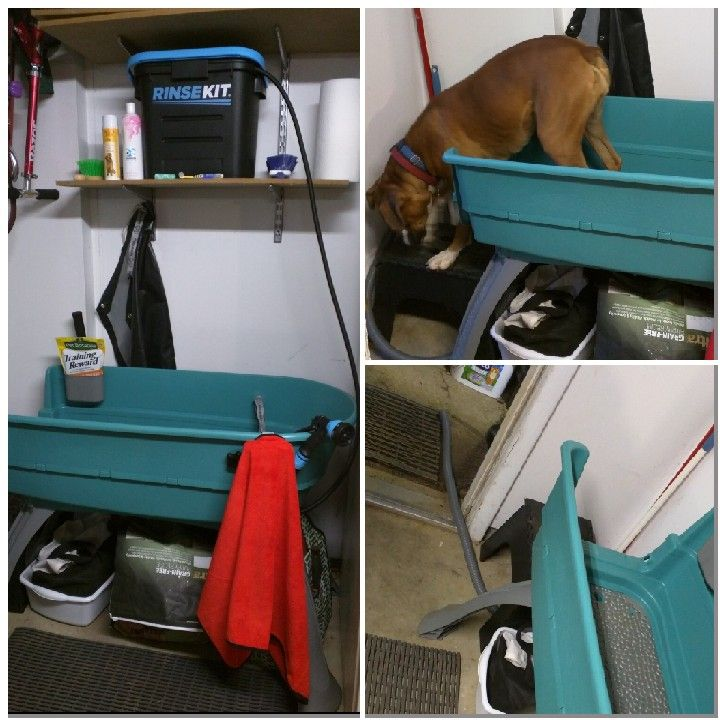 Dog Washing Station This Dog Bath Requires No Plumbing The