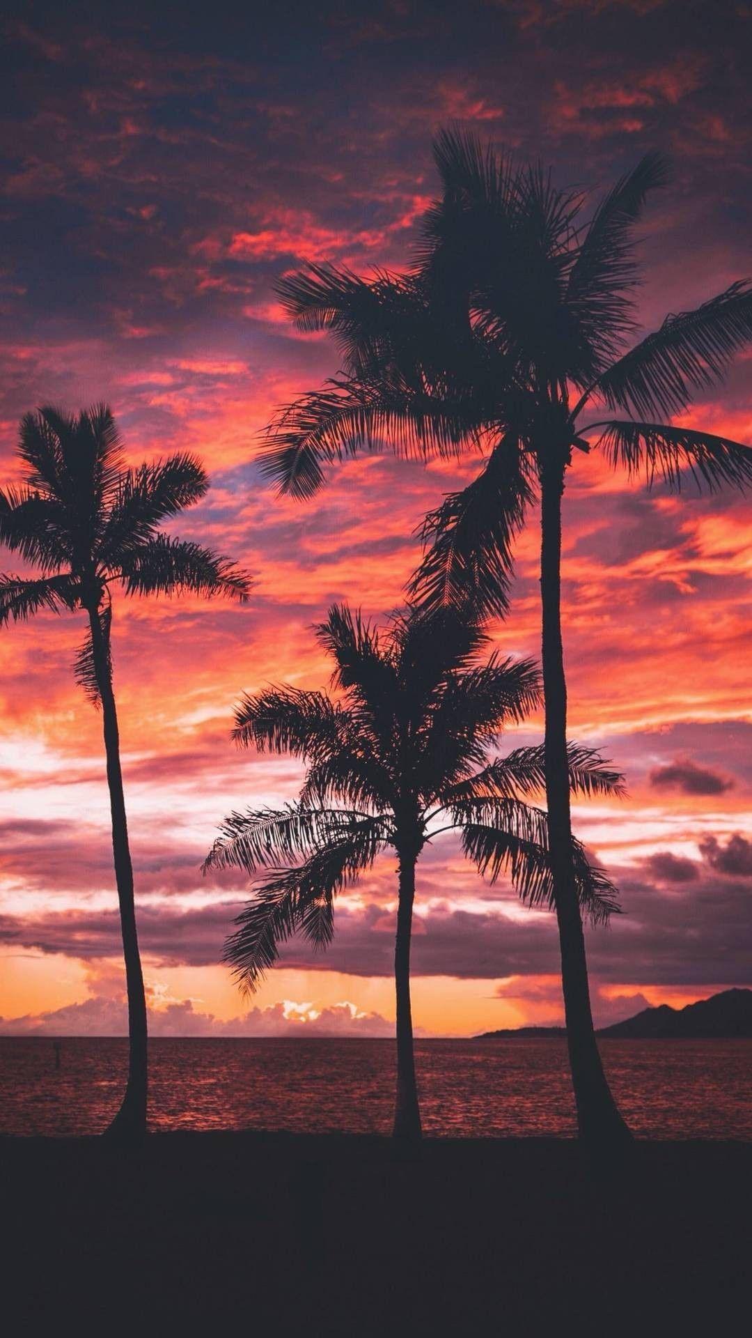 Sunset Wallpaper Beach Fotografia De Paisagem Wallpaper