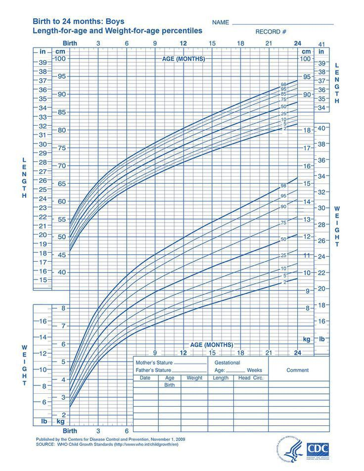 Weight And Height Chart Zrom