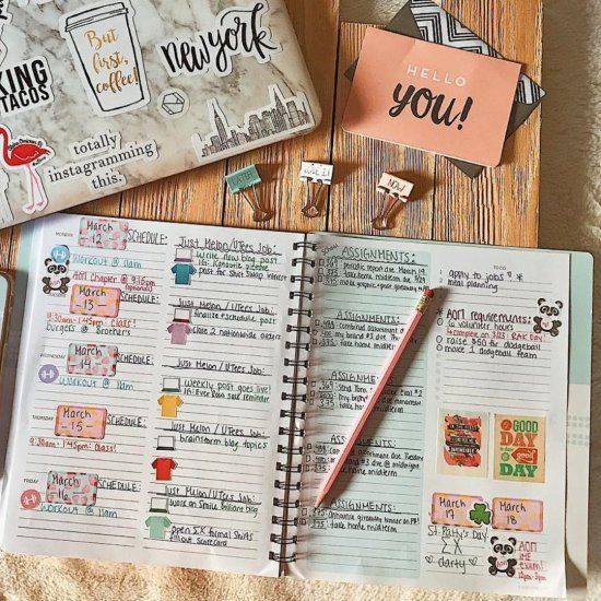 How To Stay Organized For Exams This Year - Society19