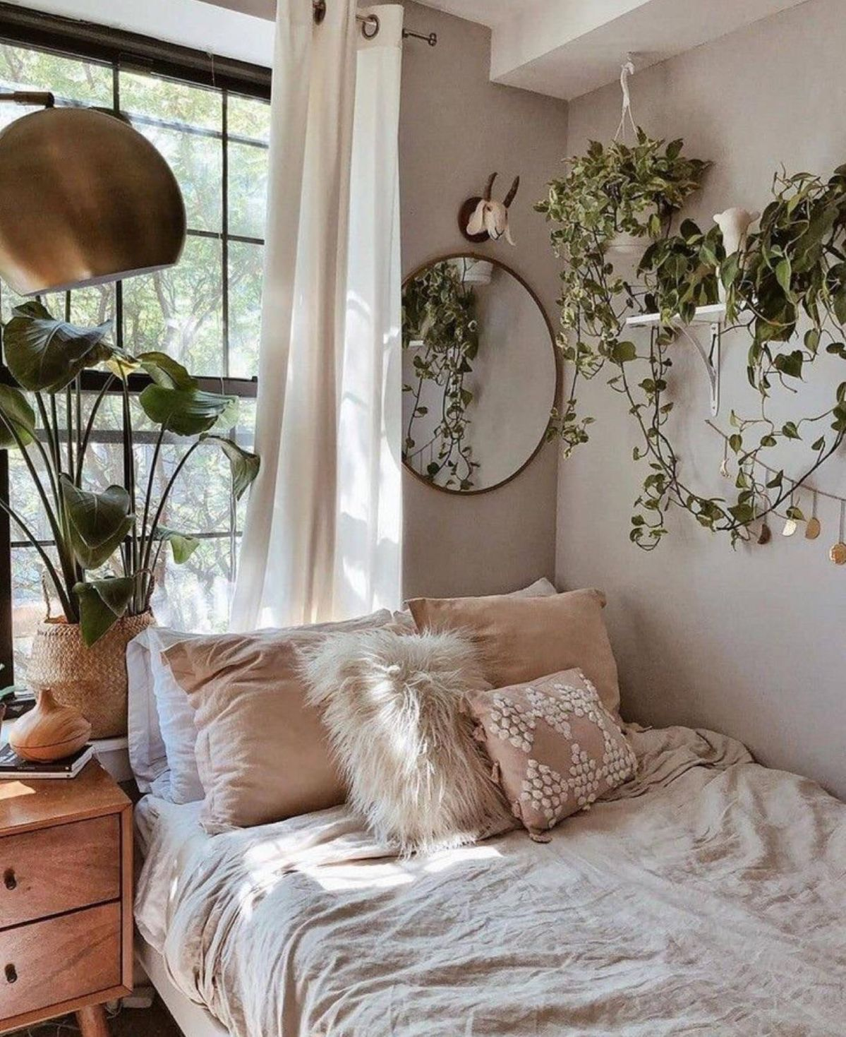 Well lit bedroom and plants.
