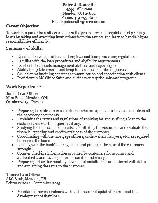 ag loan officer sample resume node2002-cvresumepaasprovider