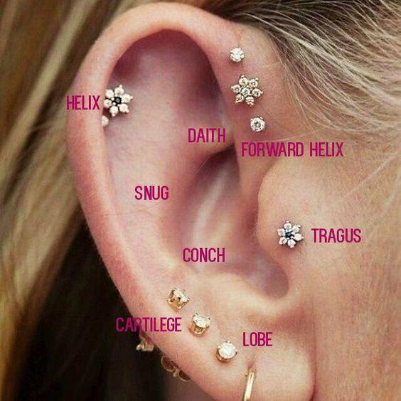 cartilage piercing diagram