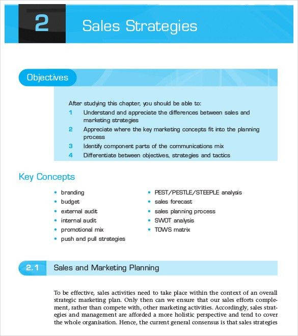 Sales Strategies Template Sales Strategy Template 10 Free Word - sales plan templates