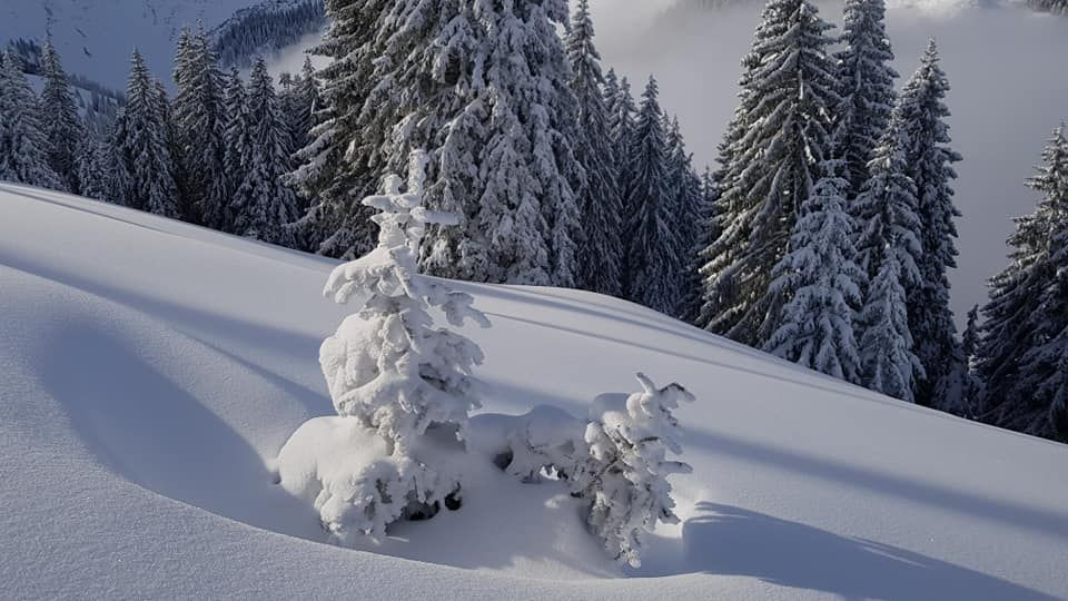 Powder snow near Kitzbuhel