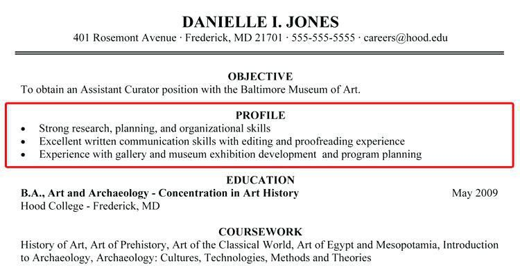 Career Profile Resume Examples Abilities Profile Resume Career