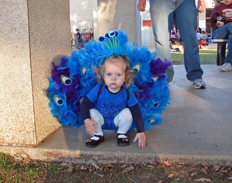 DIY Peacock Costume   Our Little Blessings