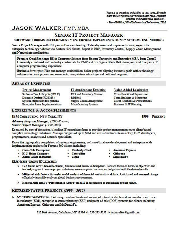 Accomplishments Examples For Resume Cio Technology Executive