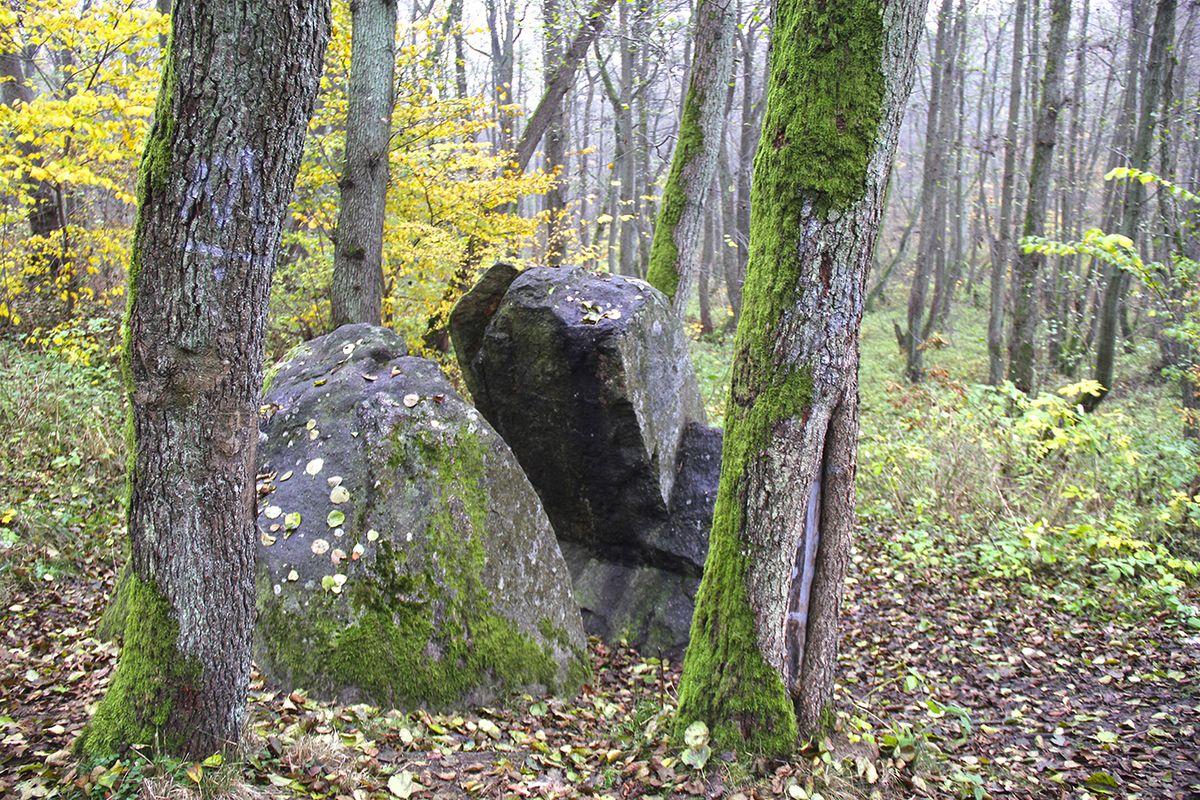 Камень Лжи (Калининградская область). Фото: Evgenia Shveda