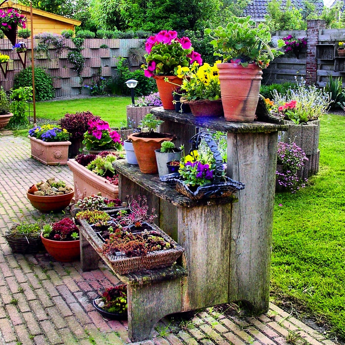 1000+ Images About VERTICAL GARDEN CLUB On Pinterest