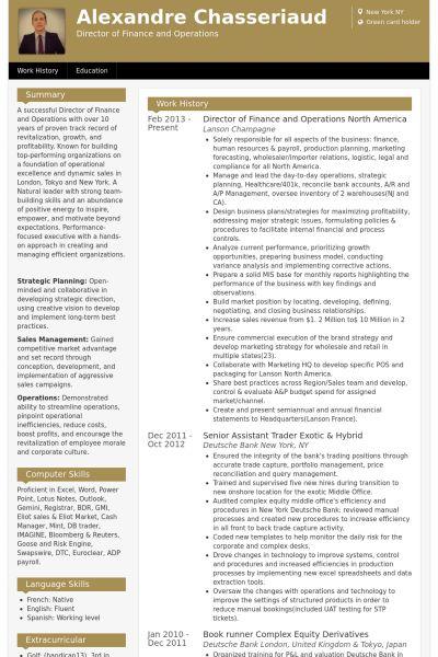 vice president of finance resume sample resume premium resume