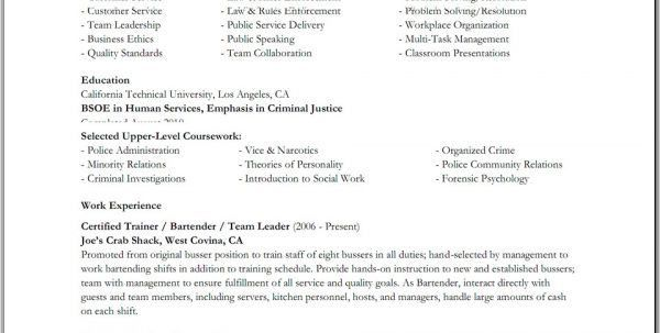 ethics officer sample resume top 8 chief ethics officer resume - Narcotics Officer Sample Resume