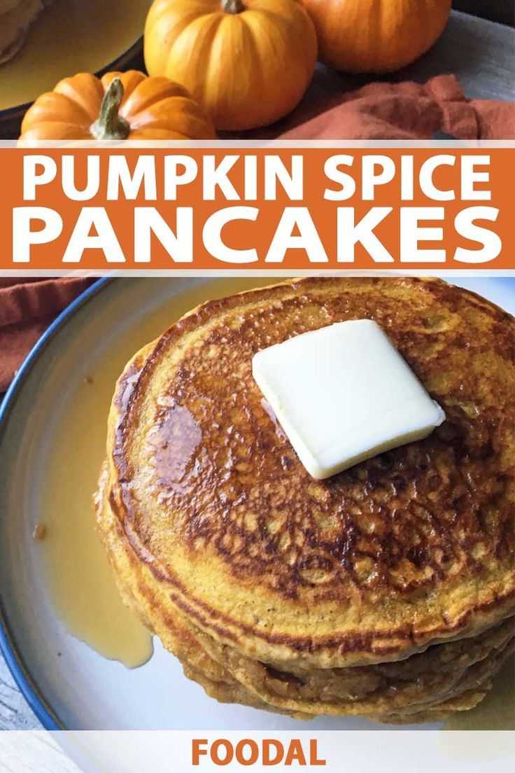 It's autumn and that can only mean one thing. Pumpkin spice! I know you know what I'm talking about. Don't play coy. You should celebrate fall flavors with this tasty pumpkin spice pancake recipe from Foodal. Real pumpkin mixed with a medley of spices transforms the ho-hum into something divine. Add some maple syrup, butter, and bacon or sausage and make it the perfect fall breakfast. Screw a $6 Starbucks latte, get your pumpkin spice fix with this recipe today! #pumpkinspice #pancakes #foodal