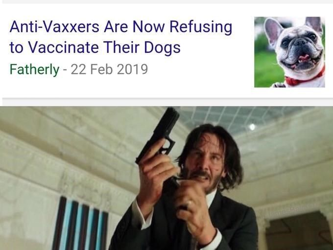 If you love dogs, action movies and Keanu Reeves then you'll love these John Wick memes! #KeanuReeves #Memes #JohnWick #Dogs #Animals #Movies