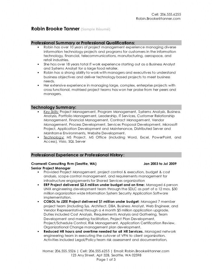Sample Professional Summary Resume Resume Professional Summary