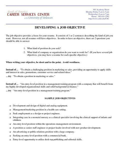 resume objective examples project management