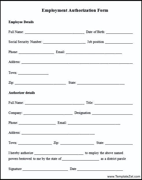 sample employment form