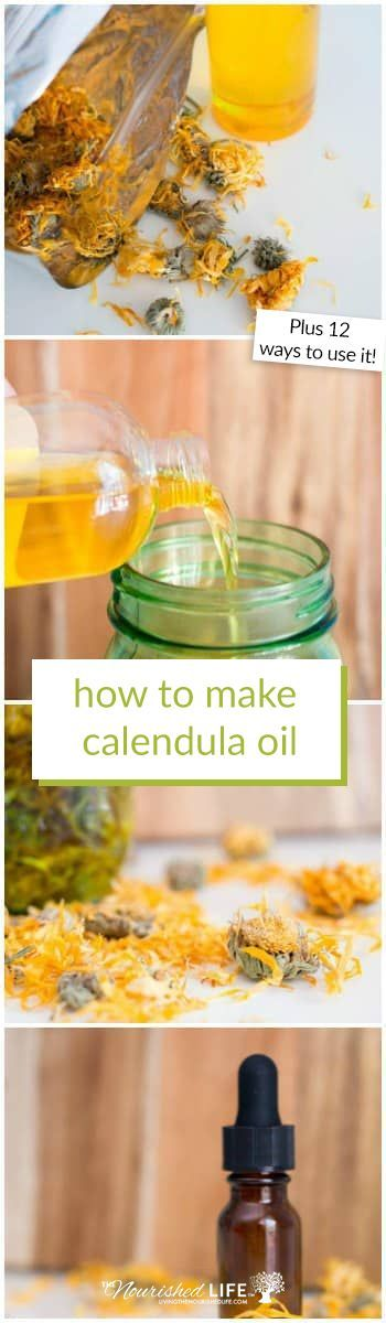 Did you know that calendula oil has many natural health benefits? Click here to learn how to make your own DIY homemade calendula oil! #calendula #diy #oils | livingthenourishedlife.com