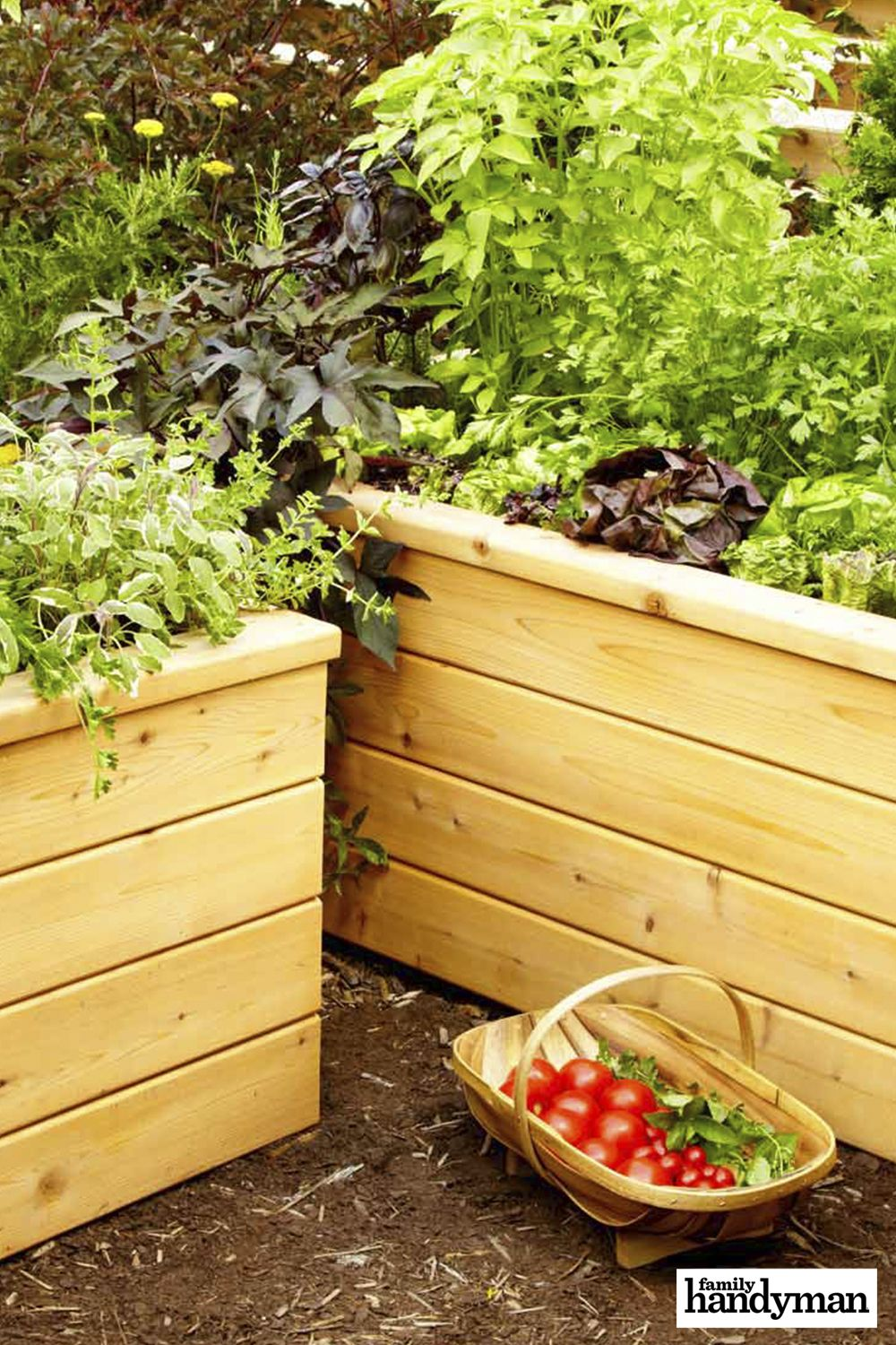 Build Your Own Self Watering Planter