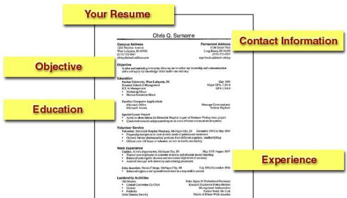 Perfect example of a resume