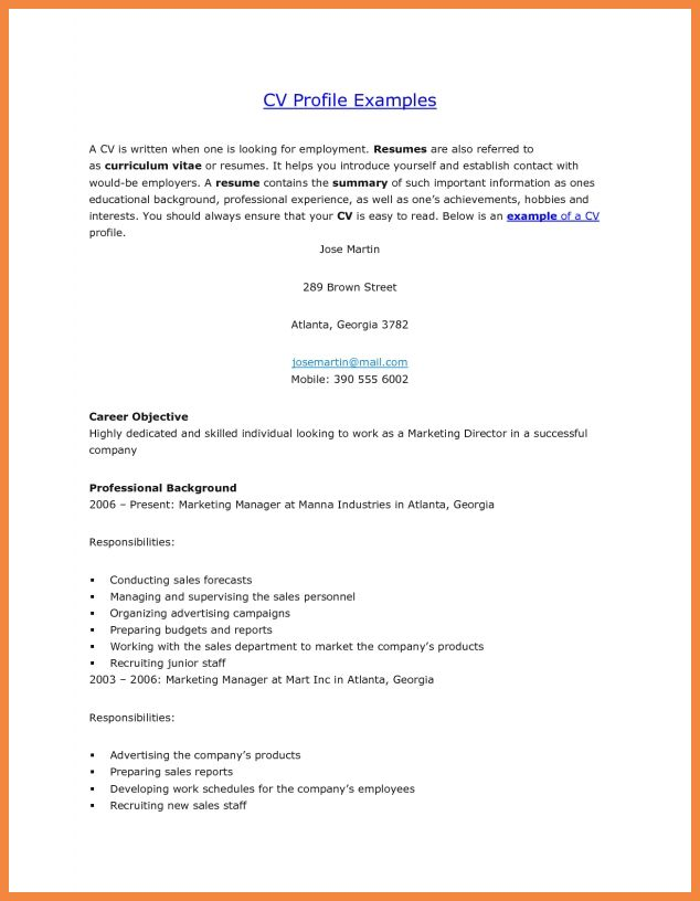 Examples Of Personal Profiles For Resumes Personal Profile