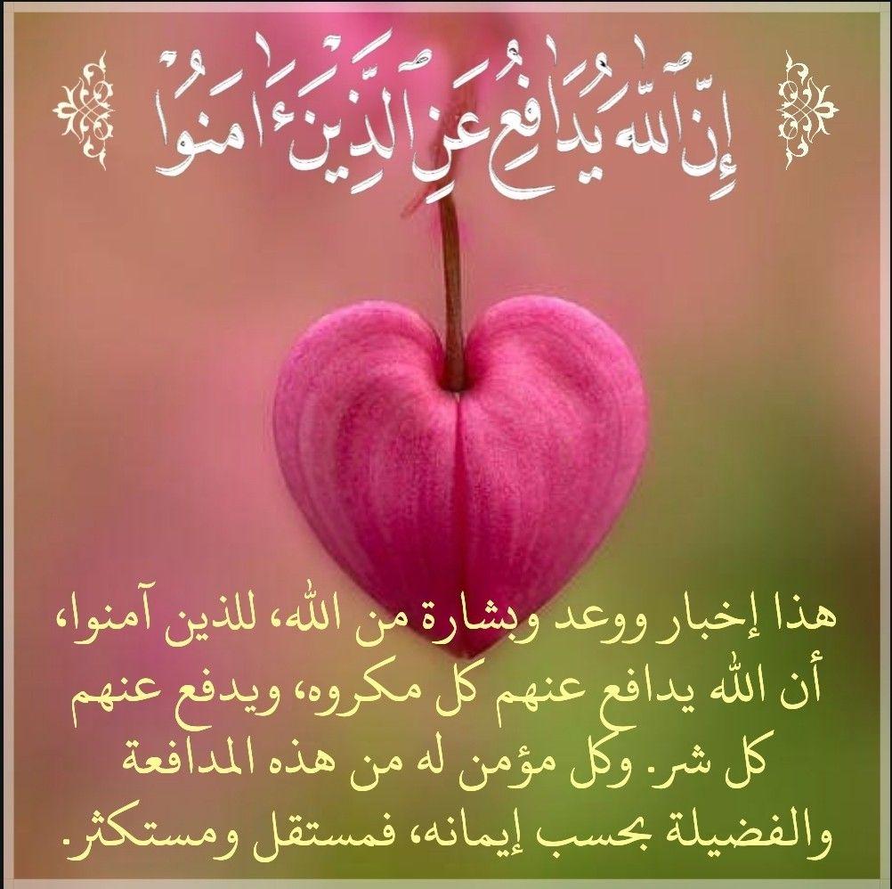 قرآن كريم آية إن الله يدافع عن الذين آمنوا Quran Fruit Apple