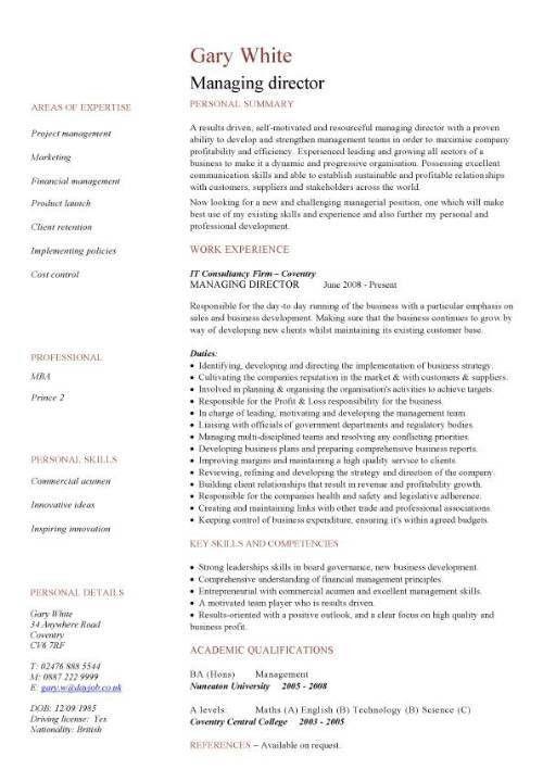 Director Sample Resume It Director Sample Resume It Resume Writer - director of it resume