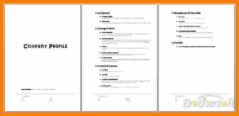 Company Profile Template Word Format 32 Free Company Profile - company profile format