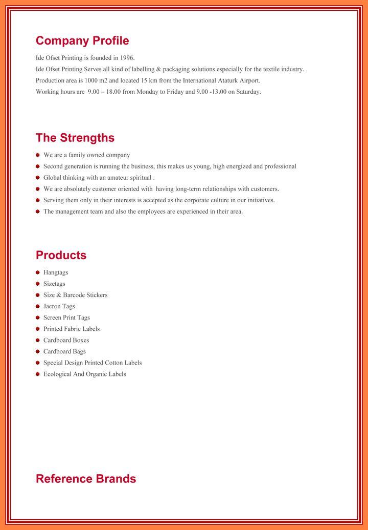 8+ Company Profile Format Template | Company Letterhead  Professional Business Profile Template