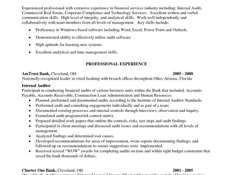 Bank Internal Auditor Sample Resume Professional Bank Internal