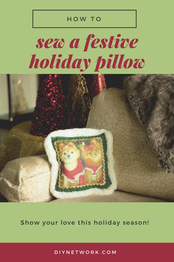 You love the holidays. You love your pets. Show your love by sewing a festive holiday pillow featuring your favorite furry companions.