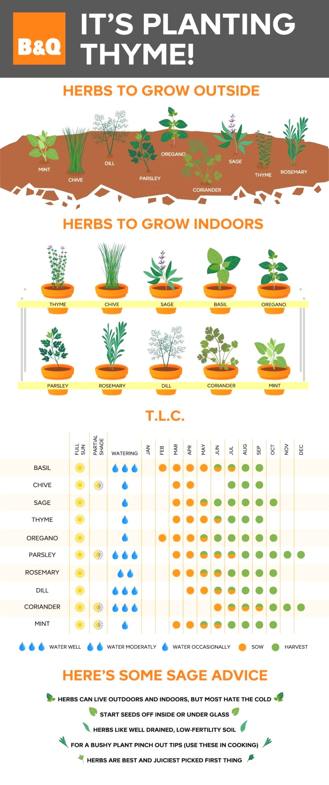 ideas for landscaping my garden #gardeningtips