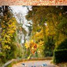 Fall Family Photo Tips   FIORIA   Me Ra Koh Photography