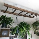 Read the full title Walnut Stained Pot Rack Ladder 4 or 5 ft Plant and Basket Holder, Pot and Pan hanger storage. Hanging Plant rack. Kitchen Island decor