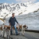 President Barack Obama In Northern Ireland For The G8 Summit And David Beckham S Tour Of China St Bernard St Bernard Dogs Bernard Dog