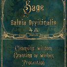 Sage Jar