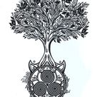 Celtic Tree Of Life(Crann Bethadh) - All You Need To Know About It