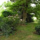 Chambre d'Hotes – Table d'Hotes – Gîtes – Camping à la Ferme – Tarn et Garonne – Zuid Frankrijk