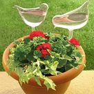 Self-Watering Plant Glass Bulbs(2Pcs) Bird