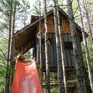 Kids Tree Forts